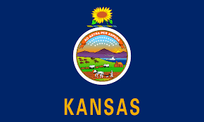 What Do You Need to Start NEMT in Kansas?
