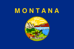 What Do You Need to Start NEMT in Montana?