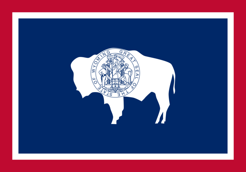 What Do You Need to Start NEMT in Wyoming?